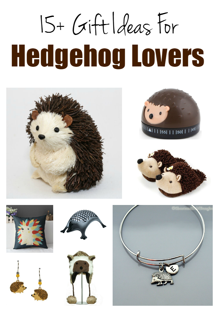 Hedgehog lovers gift guide - gift ideas for teens and adults who love hedgehogs or porcupines