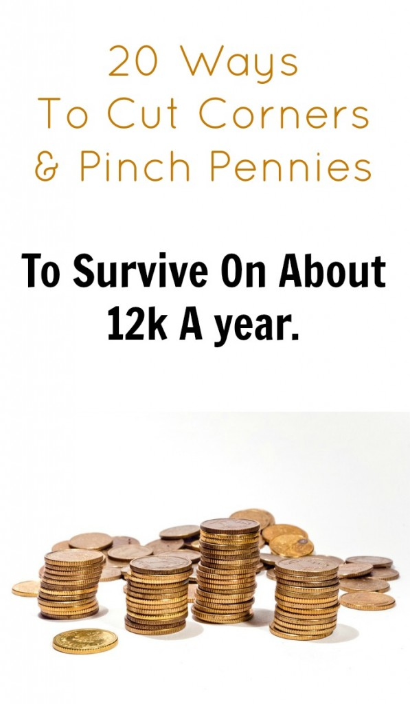 12k a year income - how to pinch pennies and cut corners