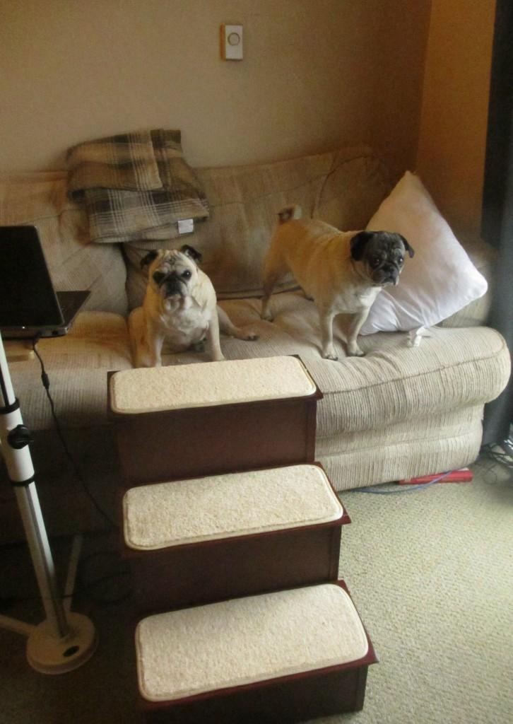 Solvit furniture grade dog steps