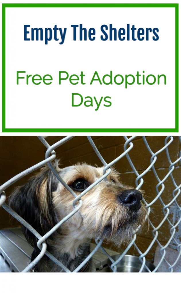 empty the shelters free pet adoption